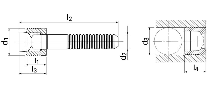 Series LK 600 expander plug